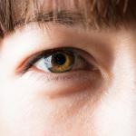 _MG_1434 Macro Eye LH